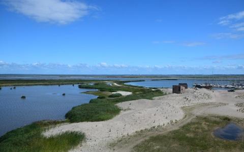 Marker Wadden Wetlands excursie Navigo Amsterdam
